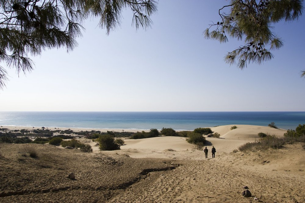 Patara Beach | By William Neuheisel