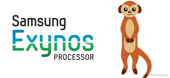 Exynos-Mongoose-1.jpg