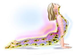healthy spine franklin method.jpeg