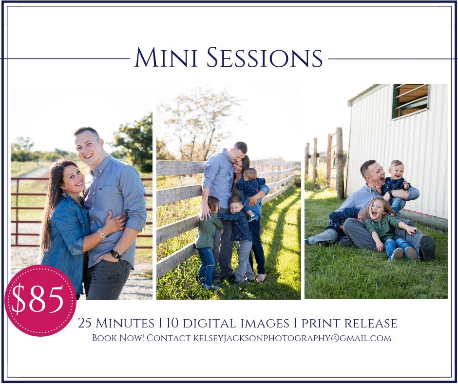 Mini Sessions.jpg