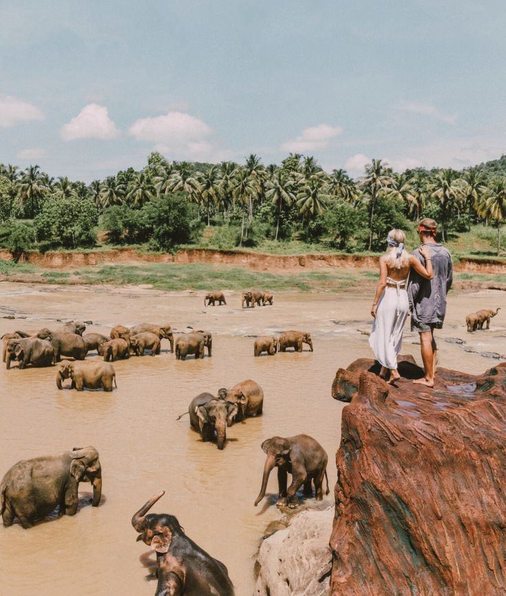 Udawalawe National Park,Sri Lanka  Credit: https://gypsealust.com