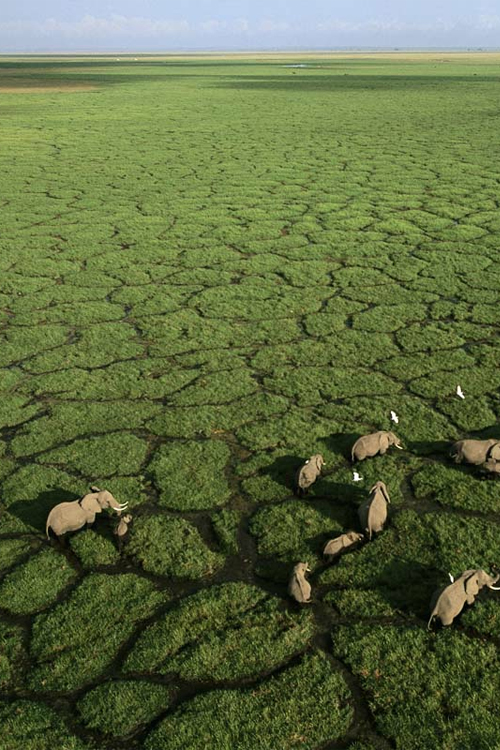Il Delta dell'Okavango, Botswana  Credit:http://trendytraveler.tumblr.com/