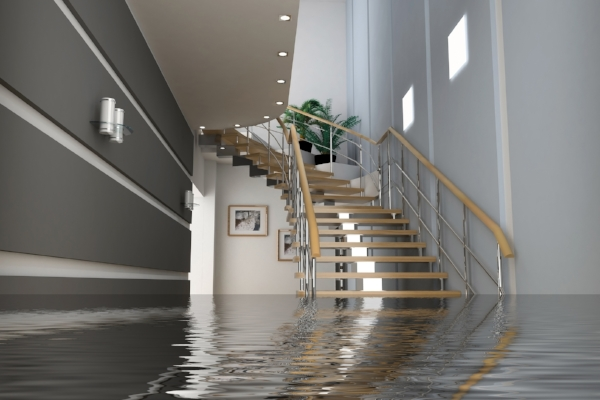 Water Extraction - No matter the time of day, give us a call. The most important thing to do is make sure we get the water out and prevent the growth of mold.