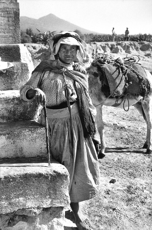 Woman and Mule on Malinche, Canoa