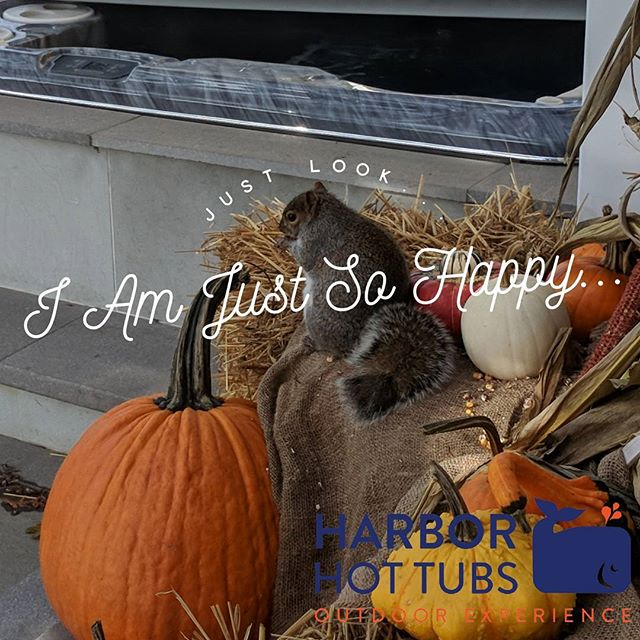 Happiness comes in many varieties  #hht #harborhottubs #stone #squirrel #hamptons #hamptonlife #
