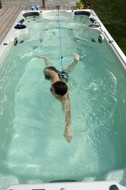 harbor hot tubs swim spa