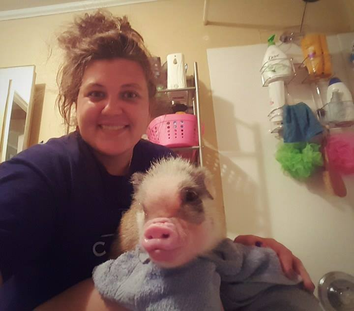 Stacey, owner of Pig Pen Hill - Mini Pigs, and Frankie after a bath with the Luxurious Piggy Body Scrub