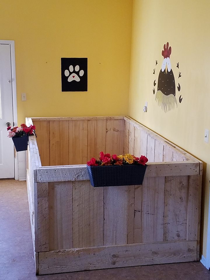 An area one of our piggy mamas created for her boys.