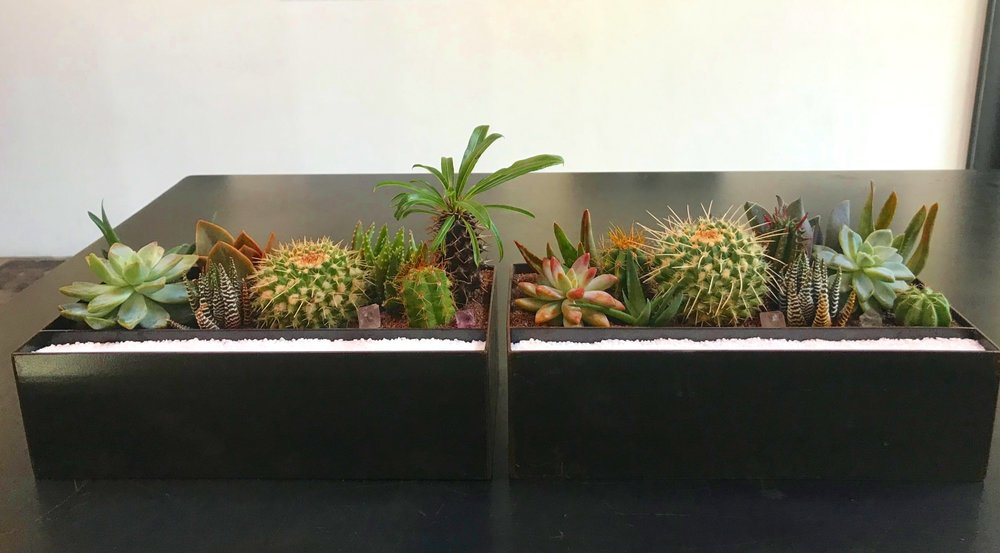 """Raw Steel Vessel - These raw steel planters were built to last. They were originally designed for a boat, but the look is versatile enough to compliment any modern industrial styled space. They measure 12""""x4""""x4"""" and come with a separate compartment for sand or rock customization to match desired color scheme."""