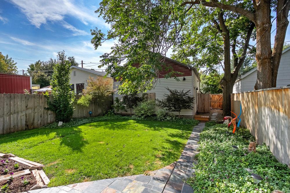 princeton backyard.jpg