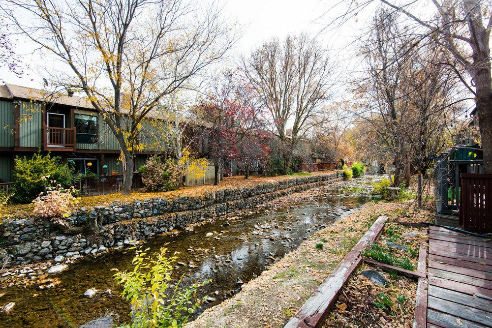 5397 creek.jpg