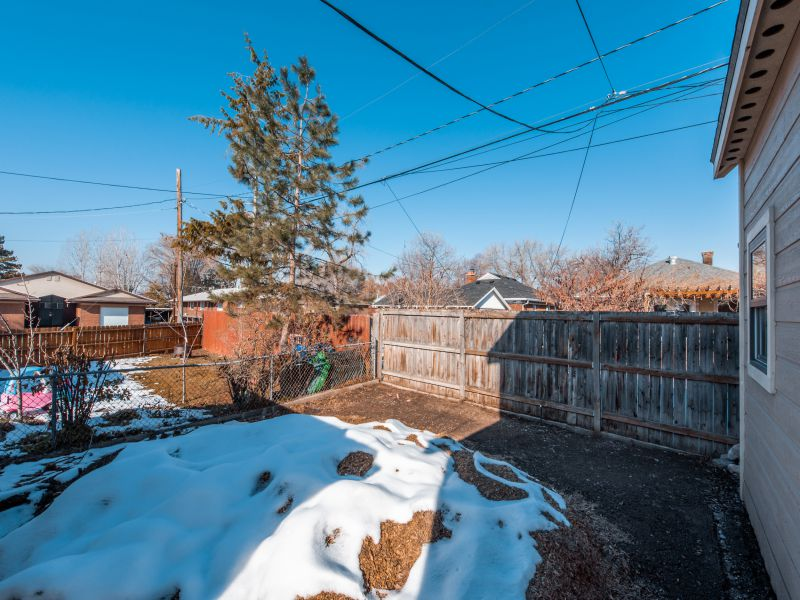 1011 Kensington backyard.jpg