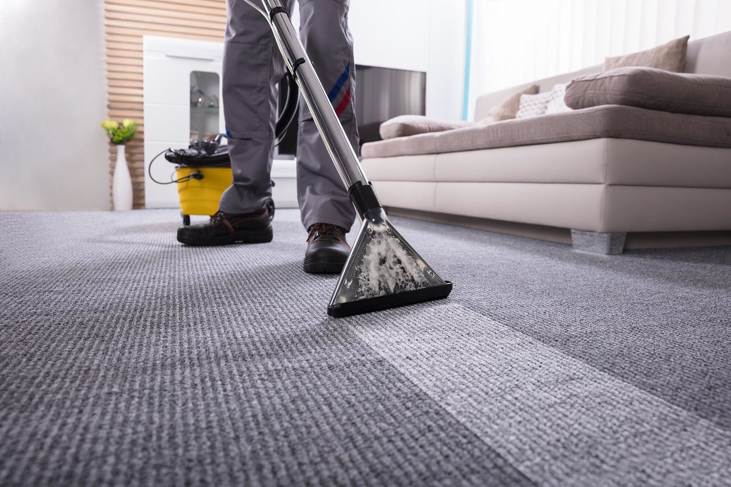 Professional Carpet Cleaning — BH Janitorial Services Multiple Professional  Services – Westlake Village