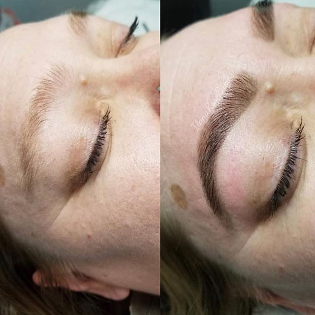 Fresh wax & tint by Ilana!! Tinting is a MUST DO if you have natural blonde brows 😍