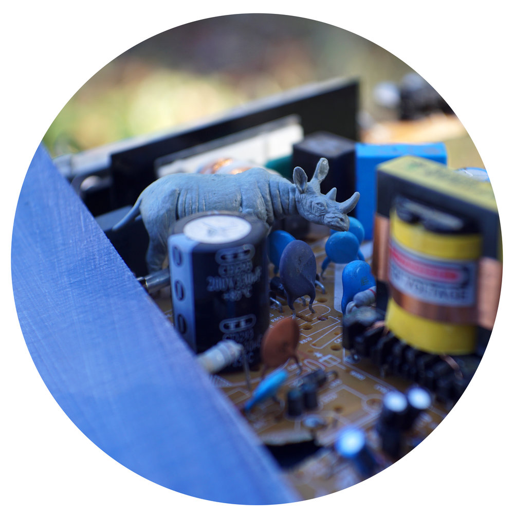 "Matt Morris, ""High Voltage Rhino,"" digital c-print on panel, 30 in. diameter"