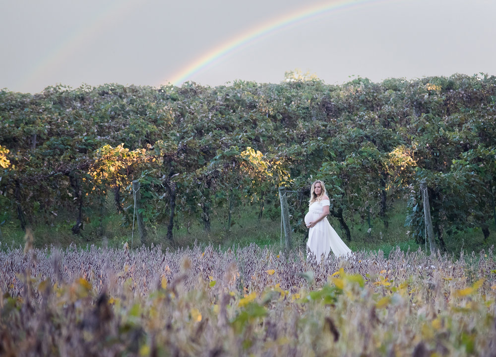 Celebrating their rainbow baby!!  This perfect spot where farm field meets vineyard in Berrien Springs, MI allowed for this creative capture.