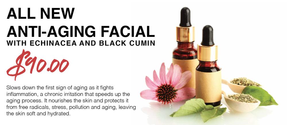 Anti-Aging Facial - echinacea and black cumin
