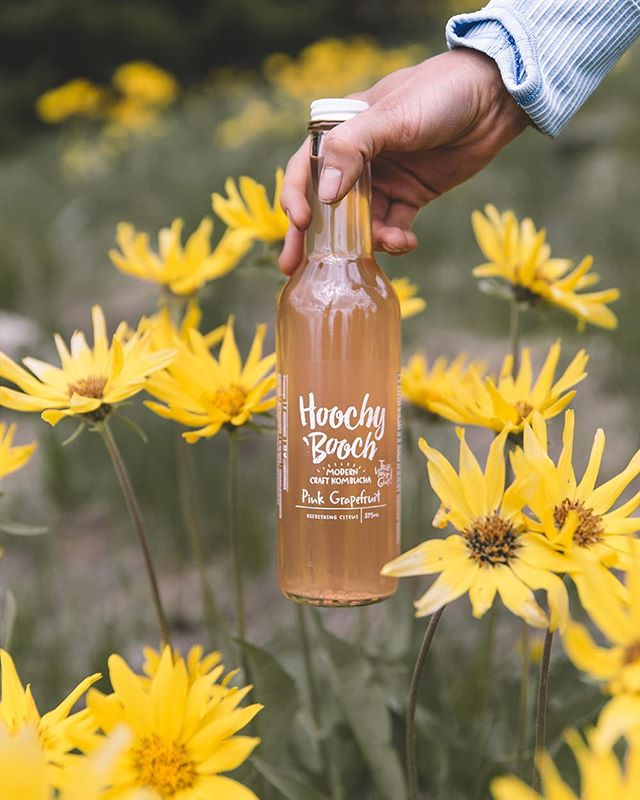 #FeatureFriday! We love Hoochy 'Booch Kombucha because it is SO refreshing, delicious, and good for you! We've partnered with this awesome #localbusiness, so you can enjoy some bubbly goodness with your next Two Triangles sammies. . . Check us out on #skipthedishes and #foodee to get some delicious sandwiches and kombucha! . . #kombucha #hoochybooch #twotriangles #aldesko #yvrfoodie #yvreats #vancouver #nofilter #foodie #yvrfoodblogger #yvr #foodporn #fooddelivery #officefood #food #lunch #photography #foodphotography #vancityeats #foodblogger #delicious #healthy #summer