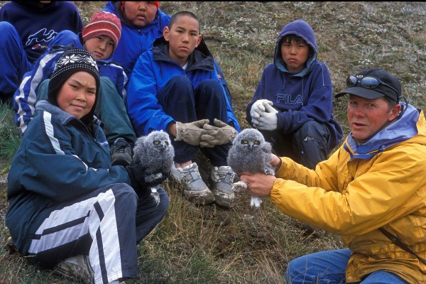 TEACHING INUIT BOYS ABOUT THE SNOWY OWL