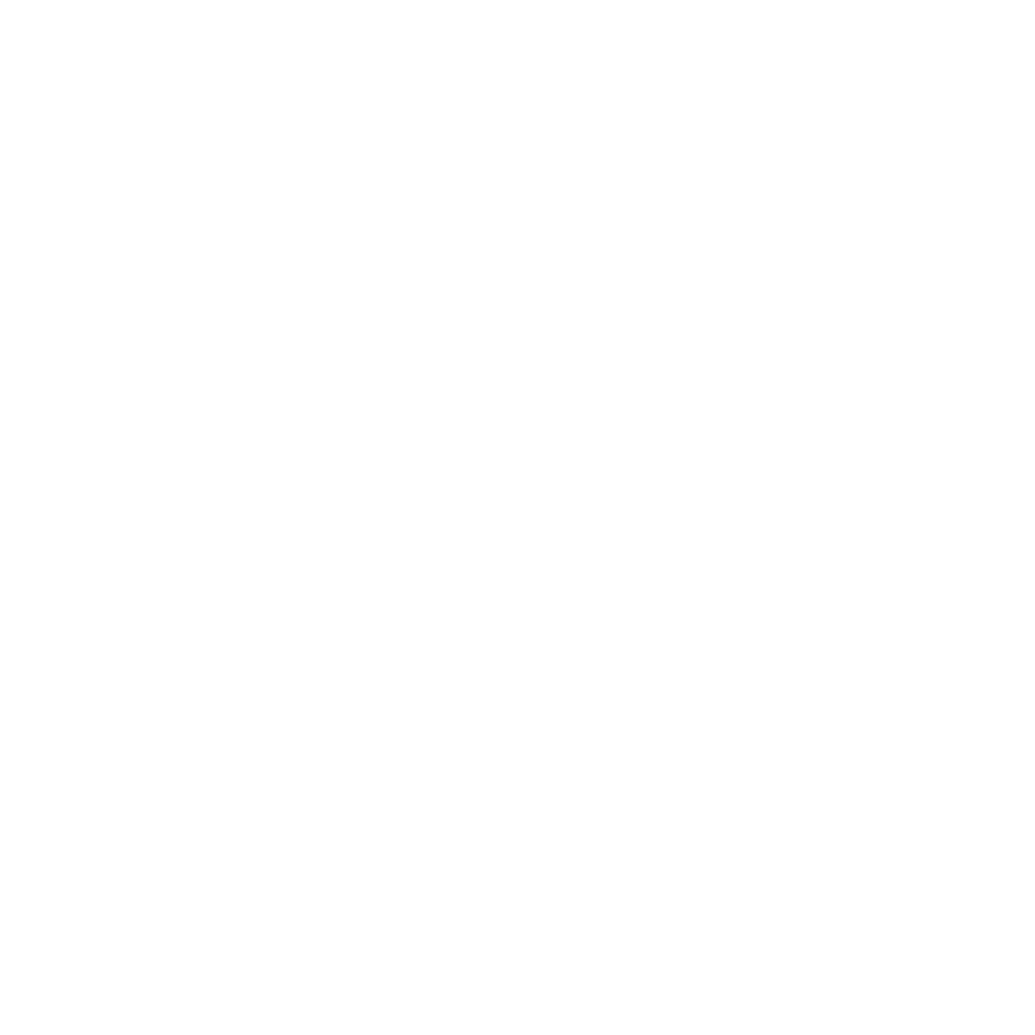 YOUTH v GOV