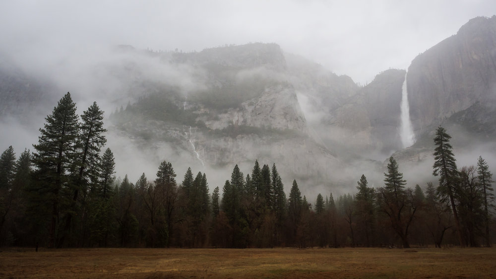 Painteresque Yosemite.jpg