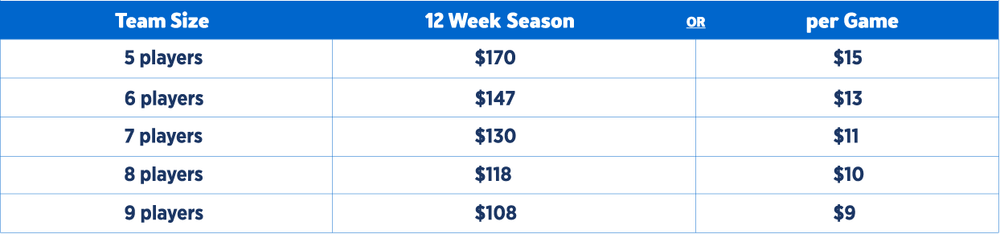 * Above amounts are based on one competition at cost of $700 per team + club memberships at cost of $30 per player (paid only once per season)