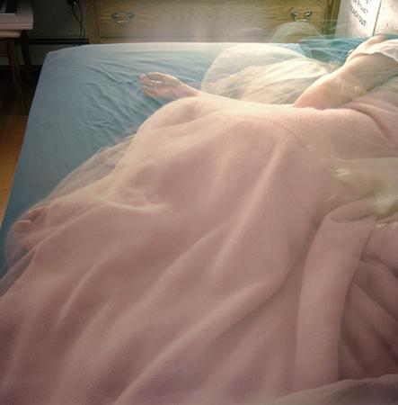 Walpole, Pink Blanket, 8 Hours, 2004