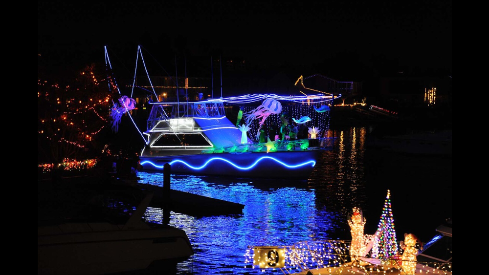 jellyfish-boat.JPG