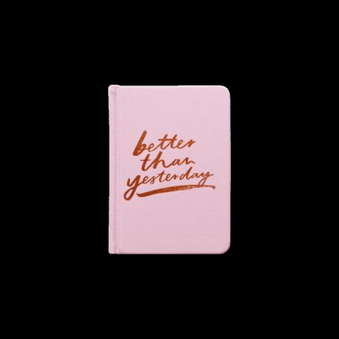 MI Goals Diary