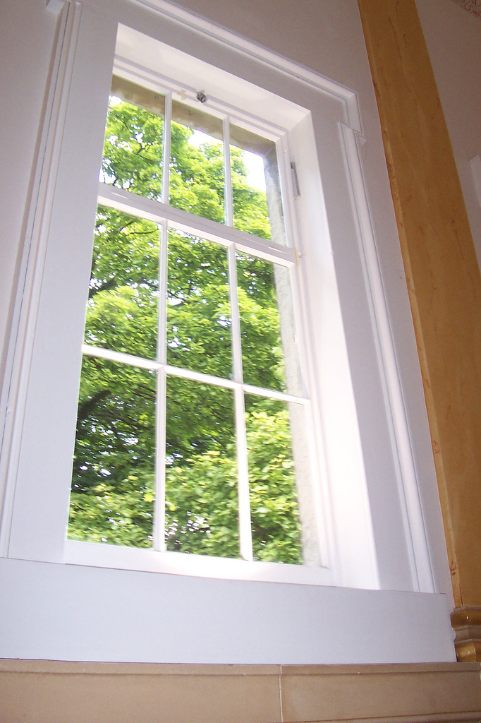 If I never hear another window again it will be too soon. Image: Flickr/greensambaman
