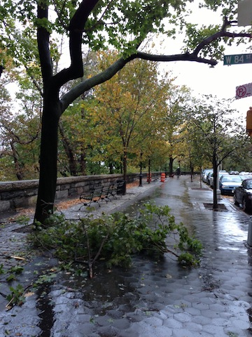 A little debris on Riverside Drive…