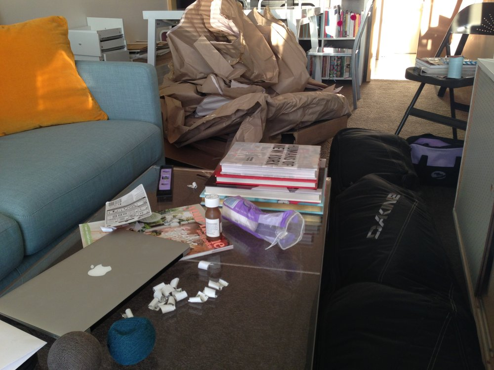 I told my friend my apartment was a total mess. She didn't believe me, so photographic proof was sent.