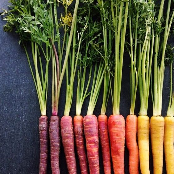 A rainbow of carrots. Image: Food52/Instagram