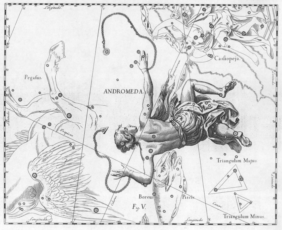 Andromeda   Da/ From : Johannes Hevelius, Firmamentum Sobiescianum sive Uranografia, Gdansk 1690 Incisione a bulino/Engraving