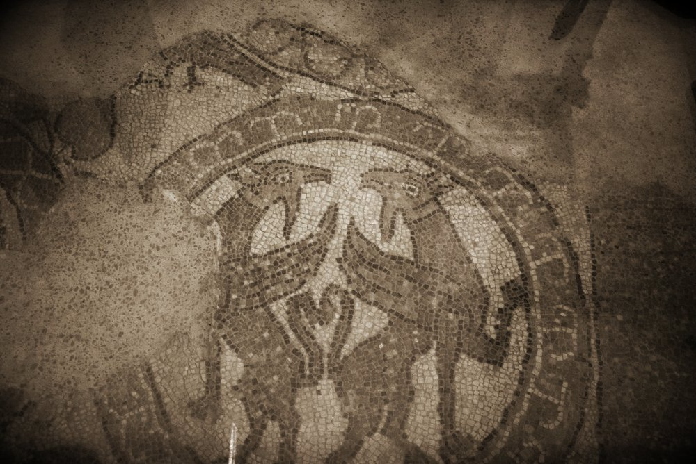 Two griffins back to back. Brindisi, remnants of the Cathedral's mosaic floor,12th century.  Photo: Mentnafunangann ,  Cattedrale di Brindisi 15 ,  CC BY-SA 4.0 , via Wikimedia Commons