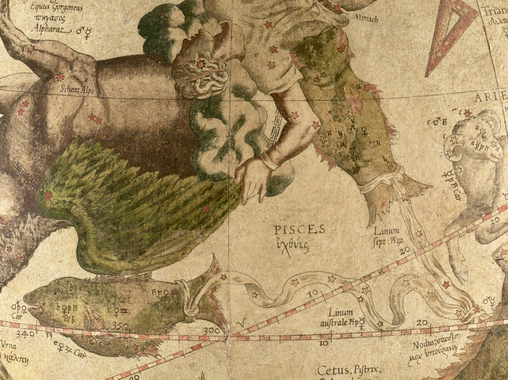 Exemple of Al Risha represented as a knot in Western cartography: Gerardus Mercator, Celestial Globe, 1551.  Photo:The Mercator Globes at Harvard Map Collection, via Wikimedia Commons