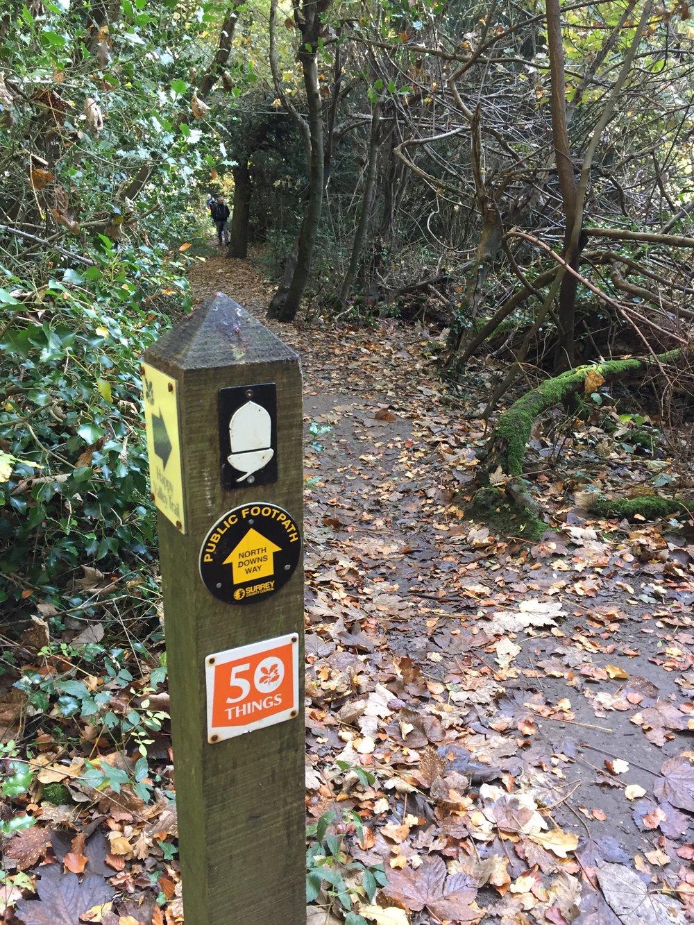 The trail awaits...