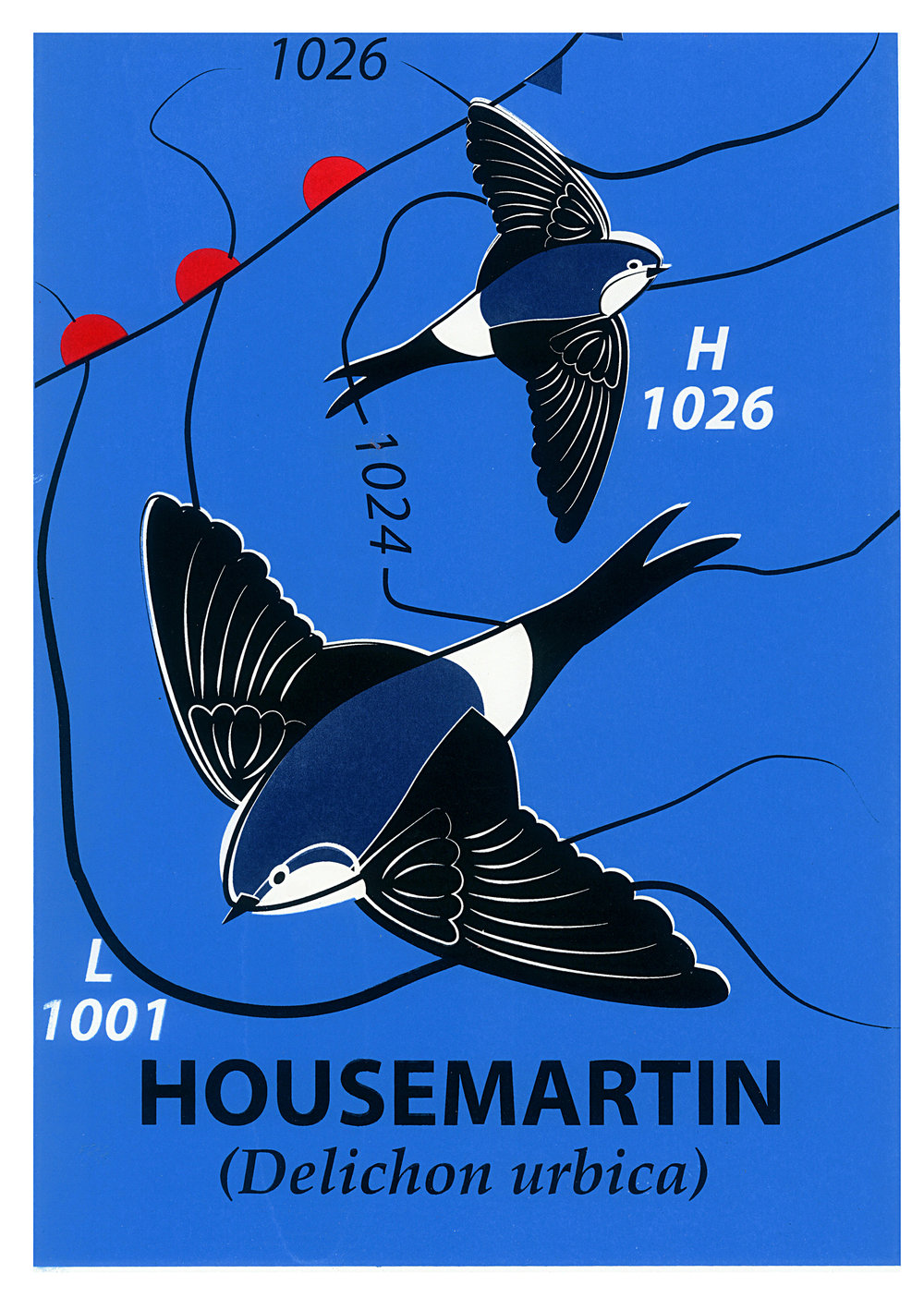 Limited Edition House Martin Screenprint