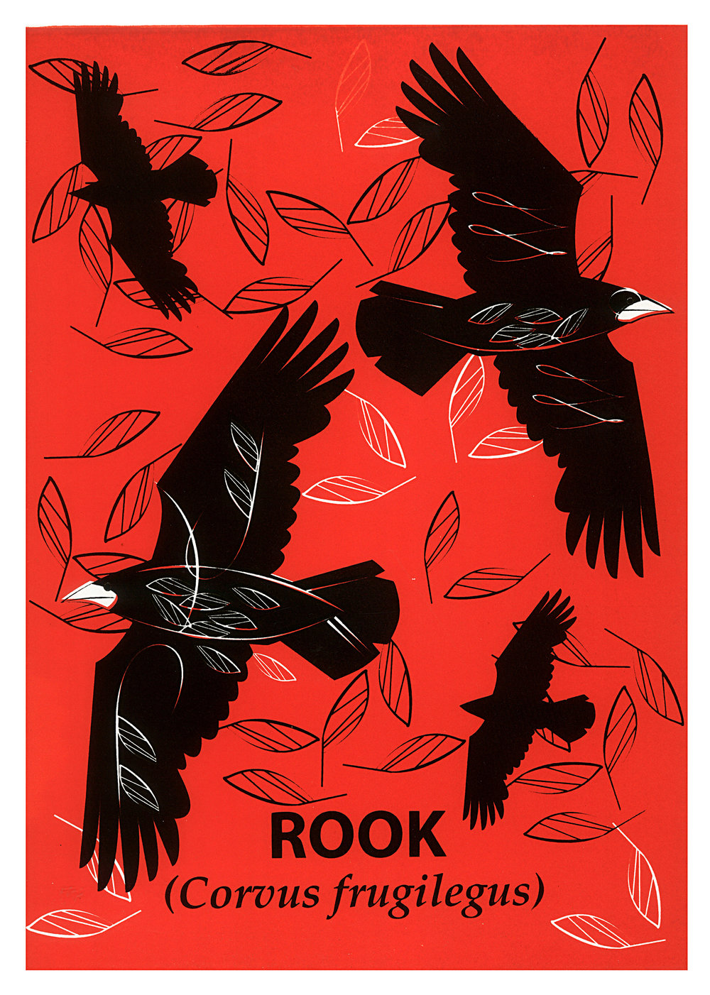 Limited Edition Rook Screenprint