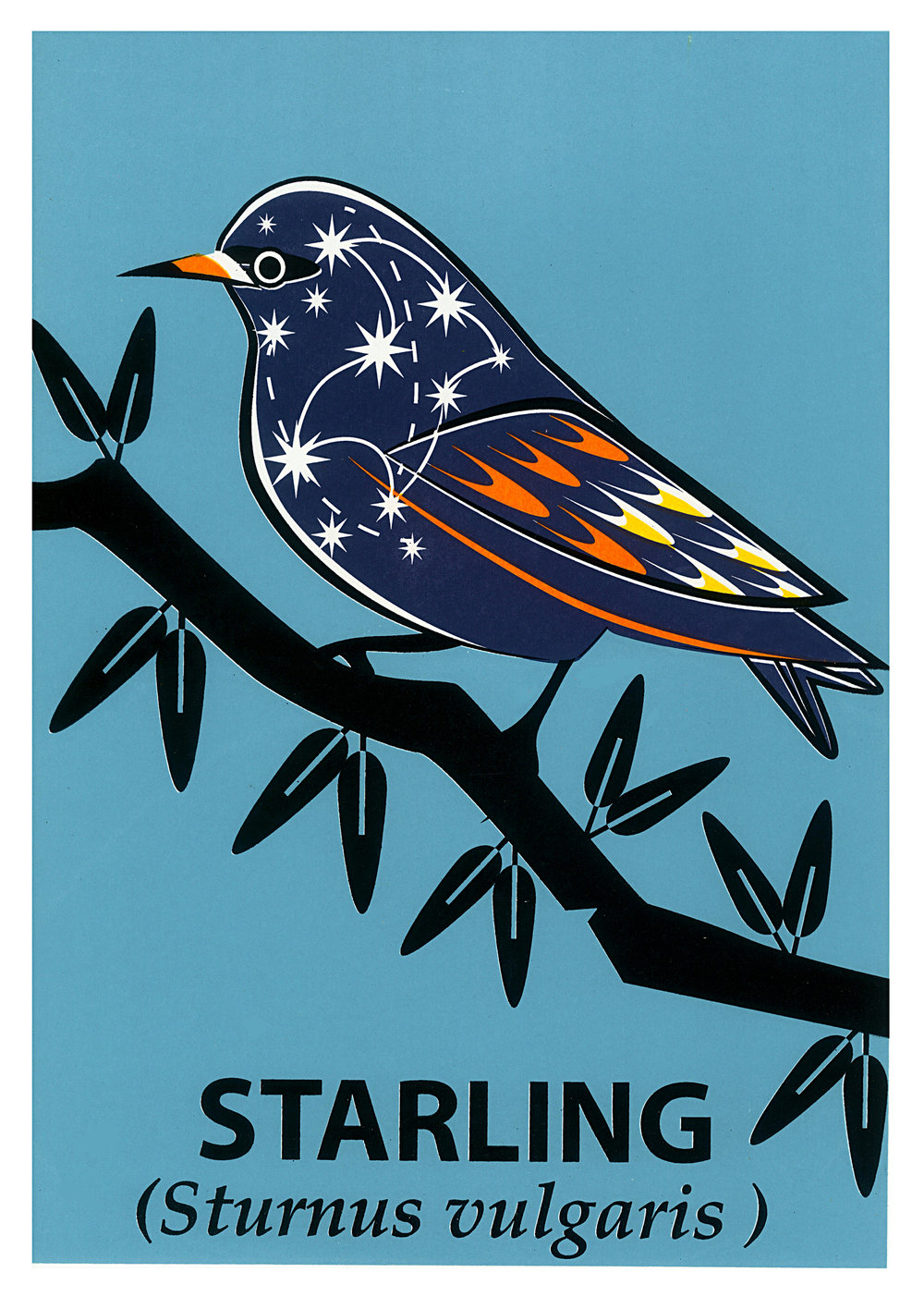Limited Edition Starling Screenprint