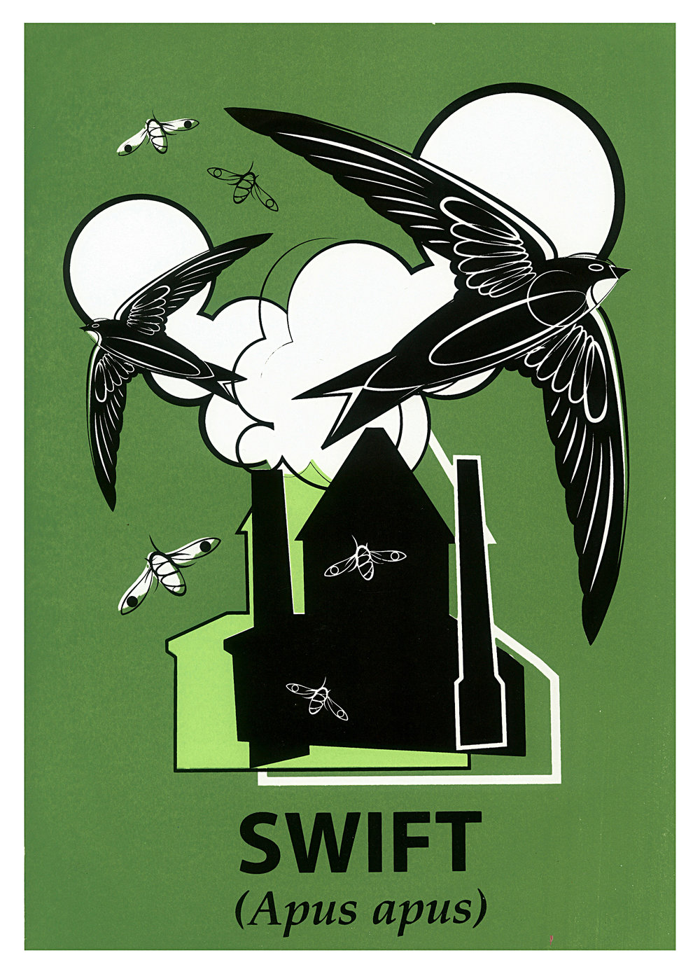 Limited Edition Swift Screenprint