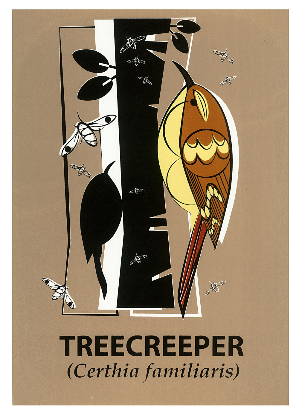 Limited Edition Treecreeper Screenprint