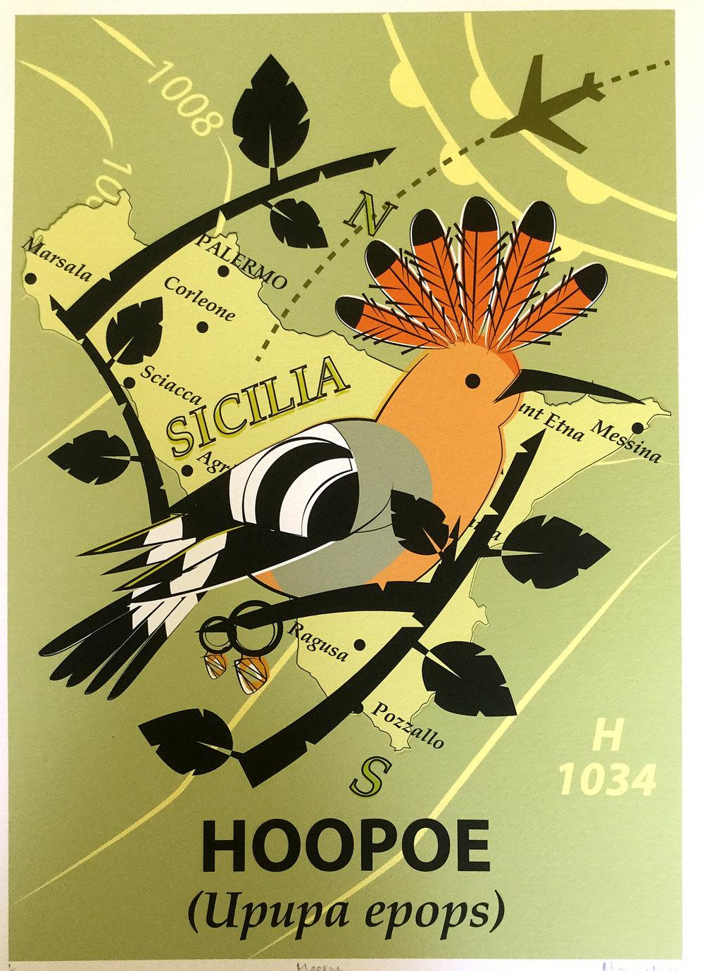 Hoopoe Giclée Print Commission 1/1