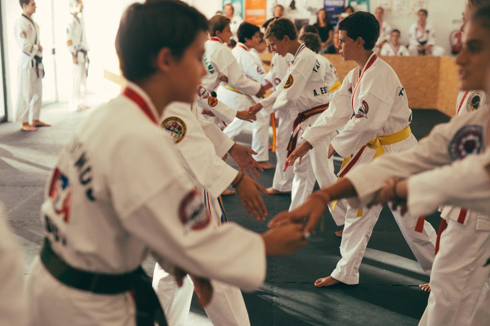 stat-artes-marciais-respeito