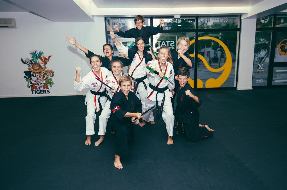stat-artes-marciais-jovens