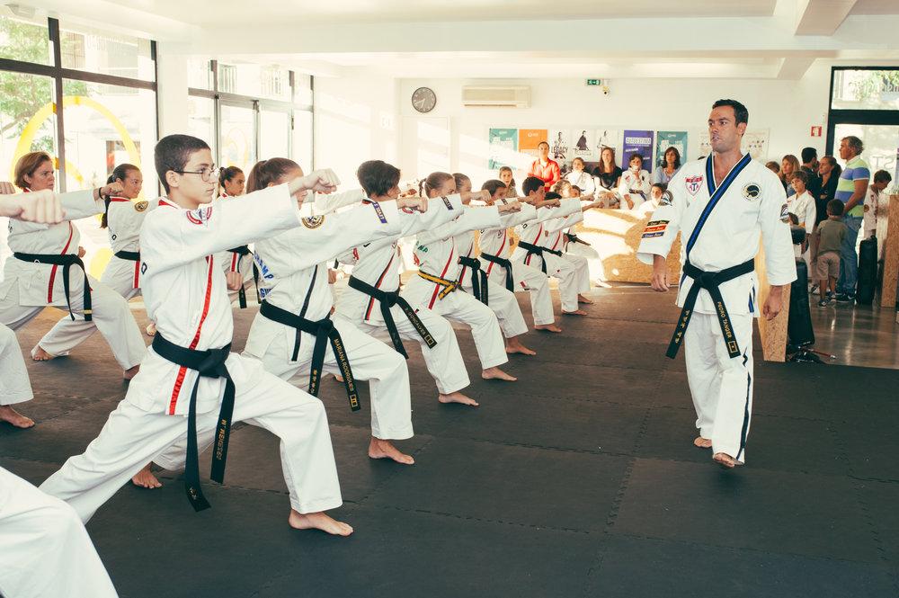 taekwond-songahm-stat-artes-marciais