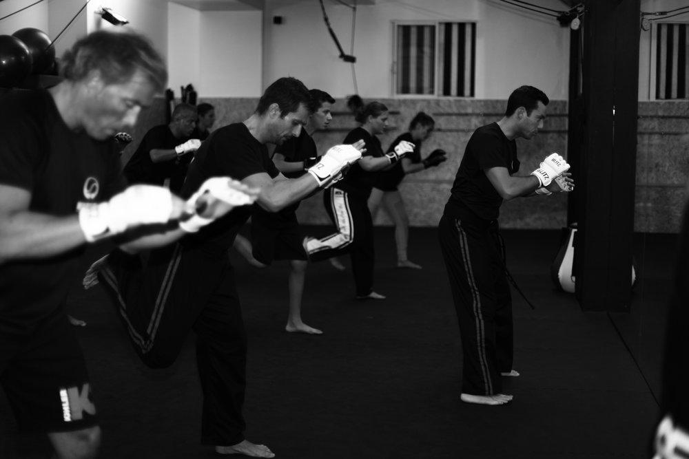 warrior-stat-artes-marciais