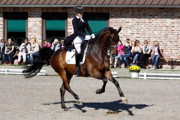 Hülsmann 2015- Axa Trophy. Hier konnte ich die Finalprüfung gewinnen.