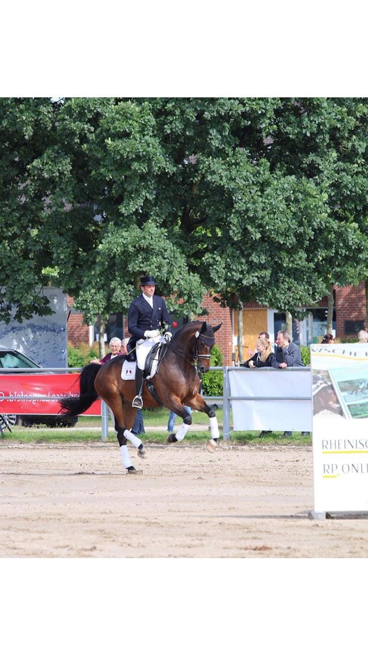 """Heiner und Henny gewinnen die Rheinischenmeisterschaften 2016 ( Heiner's erste Gold Medaillie auf den """"Rheinischen"""")"""
