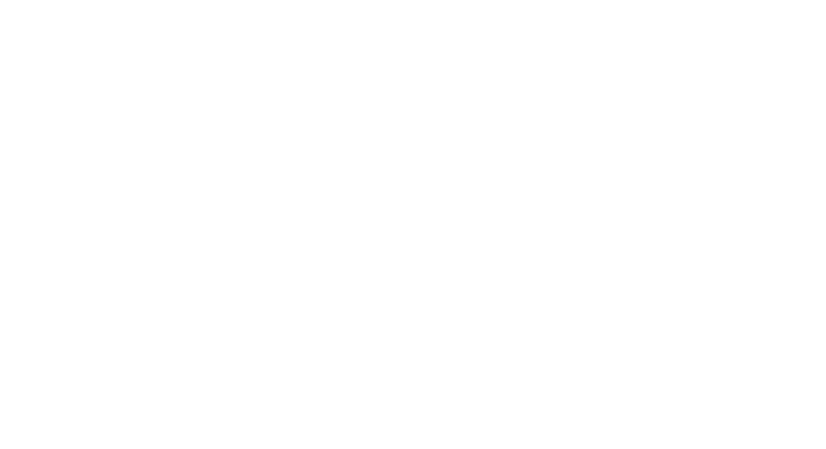 MAPLES BARBECUE